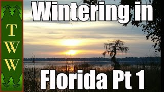 RV Travel: Wintering in Florida Pt 1 Osceola National Forest