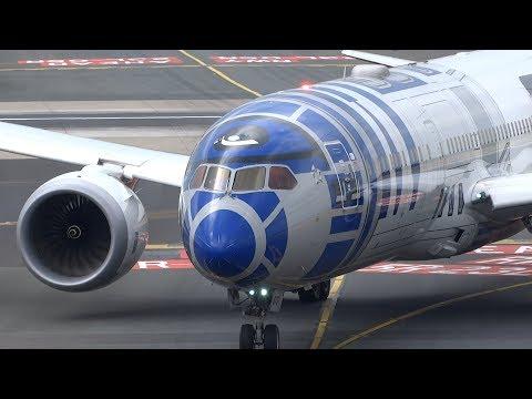 Awesome Landings Düsseldorf  Airport A340, B767, A330, B757
