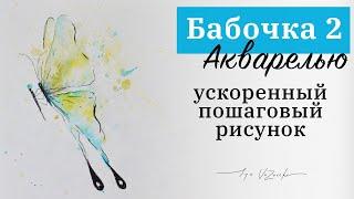 Бабочка акварелью очень просто! Пошаговый урок, обучающее видео, красивые рисунки акварелью