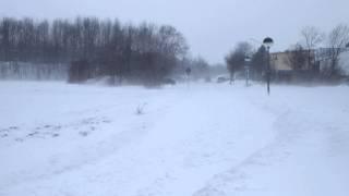 Schneesturm am 15. februar 2012 (2)