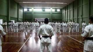 【新極真会】Shihan Kenji Midori Seminar