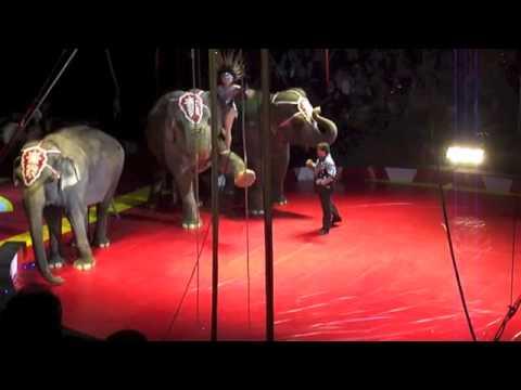 Royal Hanneford Circus Elephant Show 2-17-13