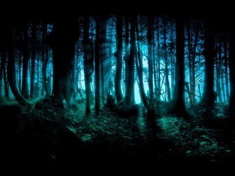 Dark Forest/Goa/Twilight/Progressive Psy Trance Mix - 2013 - ToPsy Turvey - EckoTek Soundsystem