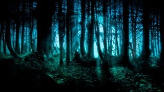 Dark Forest/Goa/Twilight/Progressive Psy Trance Mix - 2013 - ToPsy Turvey - EckoTek Soundsystem
