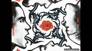 Red Hot Chili Peppers   Soul to Squeeze