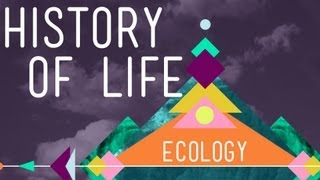 the history of life on earth crash course ecology 1