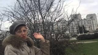 Что думают севастопольцы о возможном сносе памятника Шевченко?