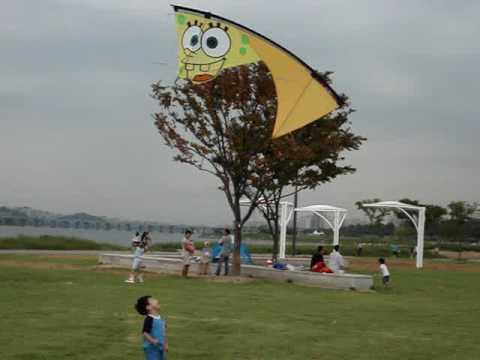 Sponge Bob Skydelta 42 Kite