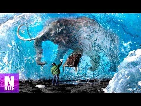 Gibt es bald lebendige Mammuts?