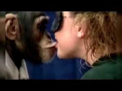 Scimpanzè Bacia Ragazzedivertente Youtube
