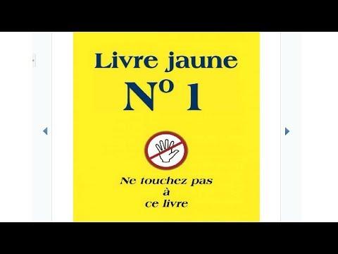 Livre Jaune N°1 - Jan Van Helsing (#Audiobook)