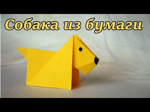 Как сделать из бумаги домашних животных