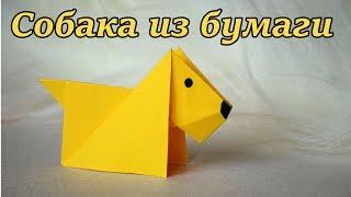 Origami dog from paper tutorial. Оригами для новичков. Собака из бумаги своими руками: видео урок