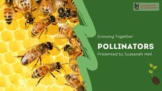Growing Together | Pollinators