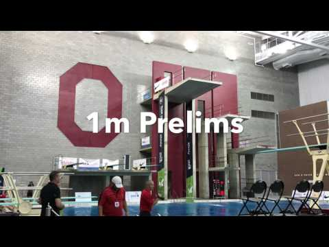 Hunter Jaynes 2017 USA Diving Nationals 16-18 JO (Columbus, Ohio)