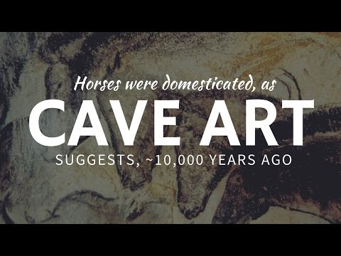 First domesticated HORSES in the ancient cave art in Eurasia