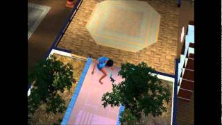 The Sims 3 Pets dog gameplay/Birthday