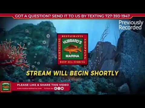 Live Q&A Fishing Show 12-6-20 | Hubbard's Marina | www.HubbardsMarina.com