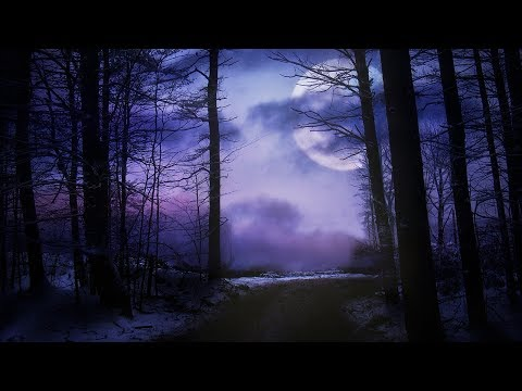 Dark Lullaby Music - Silhouette