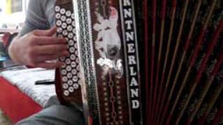 Steirische Harmonika - Sauflieder Medley