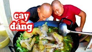 🥣Làm 3 Con Gà Cay Đắng Ăn Mừng 300k Sub - Pha Bắt Ong Chúa Nhanh Như Chớp | Sơn Dược Vlogs #600