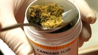 TGR Leonardo del 12/01/2017 Cannabis Terapeutica