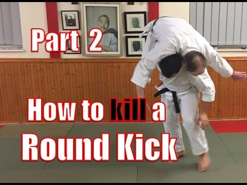 How to Kill a Roundkick - Part 2