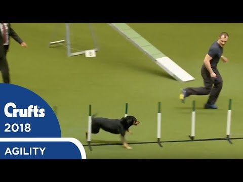 Agility - Kennel Club British Open Final (Agility) Part 2 | Crufts 2018