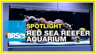 How to set up a reef tank - Red Sea Reefer Aquarium | BRStv Spotlight