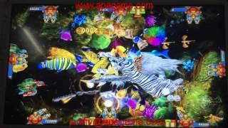 King of tiger fishing game machine tiger strike plus arcade game
