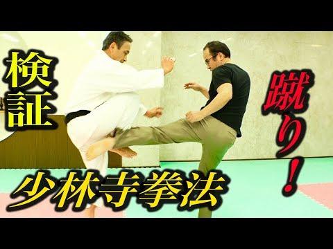 少林寺拳法にローキックしたら足が消えた?『大いなる遺産2』検証企画 Shorinji Kempo, Low kick control! 【English subtitles in CC 】