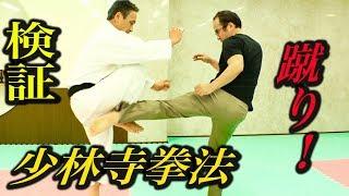 少林寺拳法にローキックしたら足が消えた?『大いなる遺産2』検証企画【3】Shorinji Kempo, Low kick control!