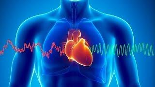 Ölüm ve İş Görmezlik Nedenlerinin Başında Kalp Damar Hastalıkları Geliyor