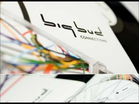 Big Bud - White Widow [HQ] mp3