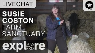 Live Chat with Susie Coston of Farm Sanctuary
