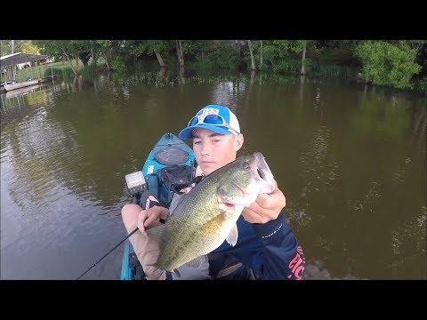 Summer Frog Fishing | Old Hickory Lake, TN