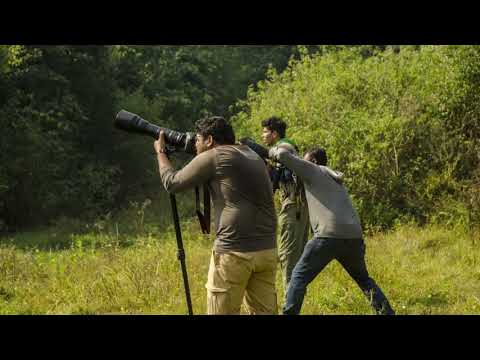 IIDAA NATURE & WILDLIFE PHOTOGRAPHY TRAINING 2017