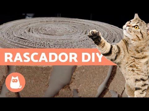Cómo hacer un rascador para gato con cartón