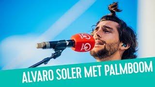 Alvaro Soler heeft plots een palmboom op zijn hoofd! | Q-Beach House
