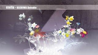 stella - KASHIWA Daisuke