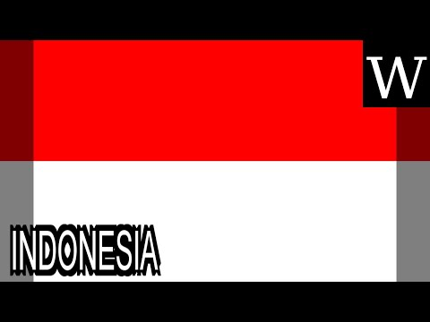 INDONESIA - WikiVidi Documentary