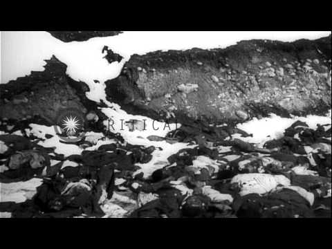 Turkish soldiers killed during the Battle of Sarikamish in World War I HD Stock Footage