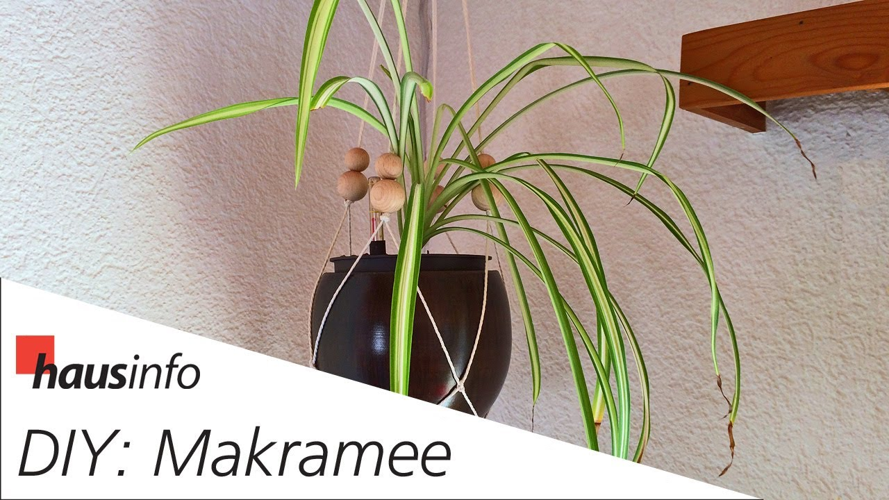 Diy Makramee Blumenampel Selber Knupfen