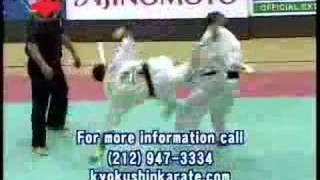 2007 All American Open Karate Championships ad