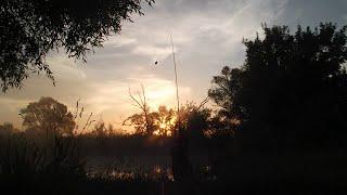 Рыбалка на Северском Донце. Как ловить плотву на фидер.