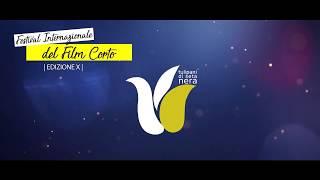 Promo Festival Internazionale Tulipani di Seta Nera 2017