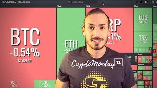 BAKKT, FACEBOOK Coin, BitTorrent Token - CryptoMonday News