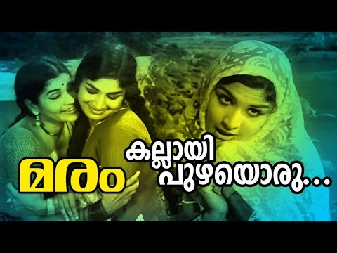 Kallayippuzhayoru... | Evergreen Malayalam Movie Song | Maram Movie Song