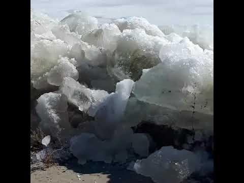 Ледоход -2019: Томь освобождается ото льда