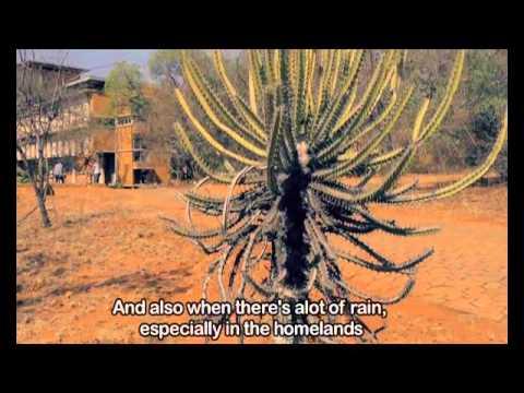 TOMz 7 - Episode 30: Ecosystems
